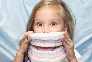 Dental Services - fillings